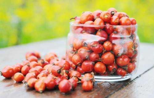 макароны: польза и вред, особенности продукта